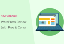 WordPress Pros and Cons of business in detail