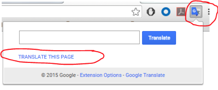 Tips to Activate Translation Features in Various Browsers