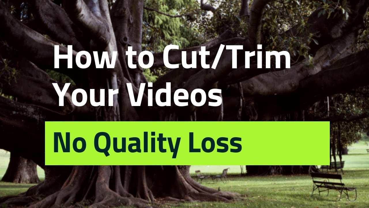 Best Videos Cutter Simply With VideoProc