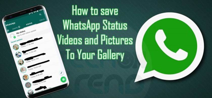 How To Save Other's WhatsApp Status on Android