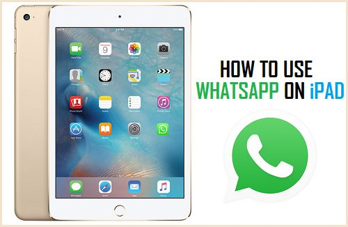 How to use WhatsApp on his iPad?