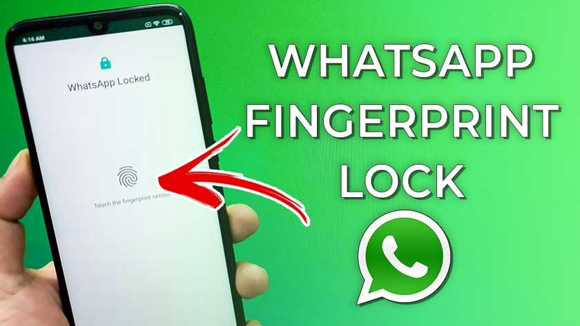 WhatsApp Fingerprint For Android: how to do it
