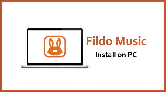 How to Download Fildo For PC