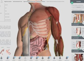 The best 3D human anatomy sites and apps
