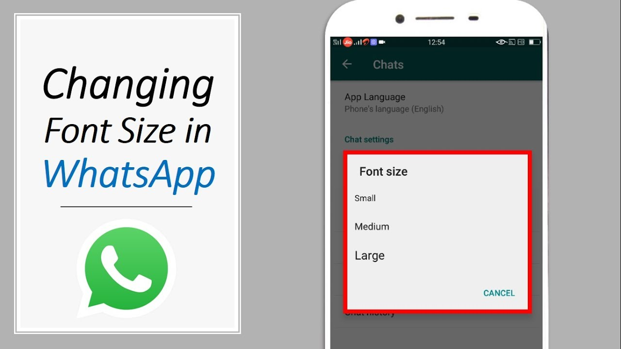 How to Change the Font Size of WhatsApp on iPhone
