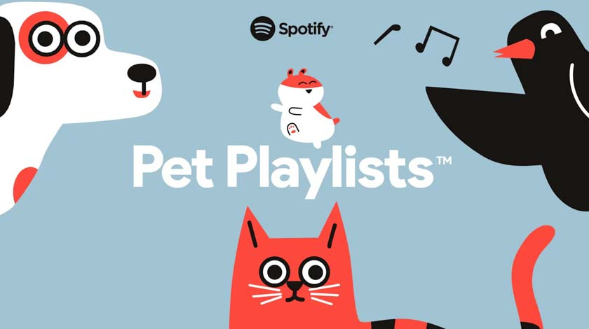 Most listened Songs by Yourself on Spotify: How to See Pet Playlist