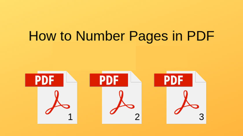 How to Number Pages in a PDF