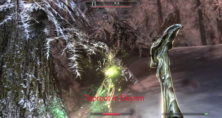Where to Get Taproot in Skyrim?