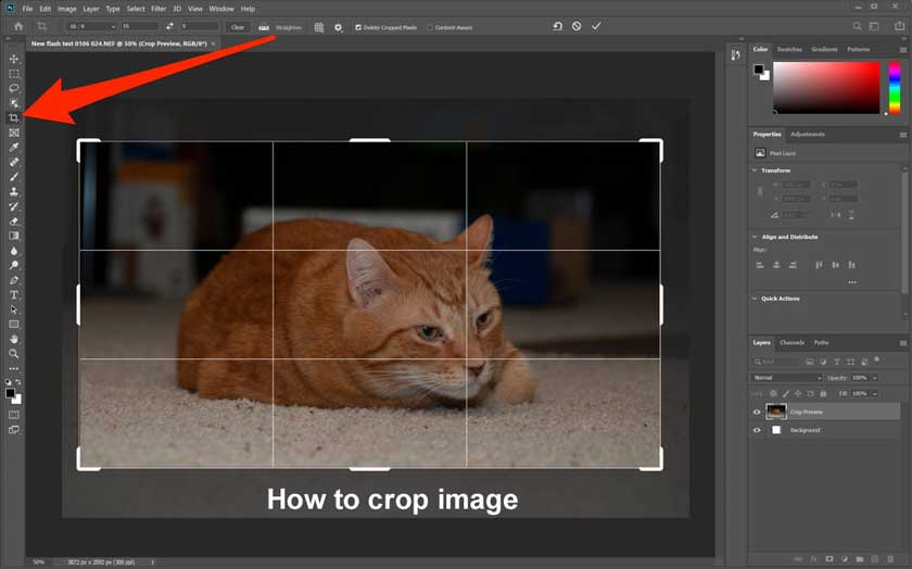 How to Crop a Photo Using Photoshop