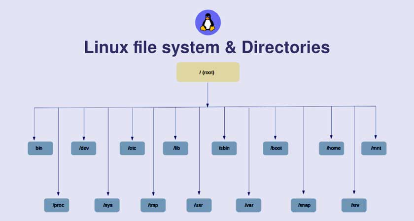 Folders and Functions in the Linux File System