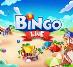 Differences Between Online and Live Bingo