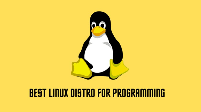 List of Best Linux Distros For A Programmer